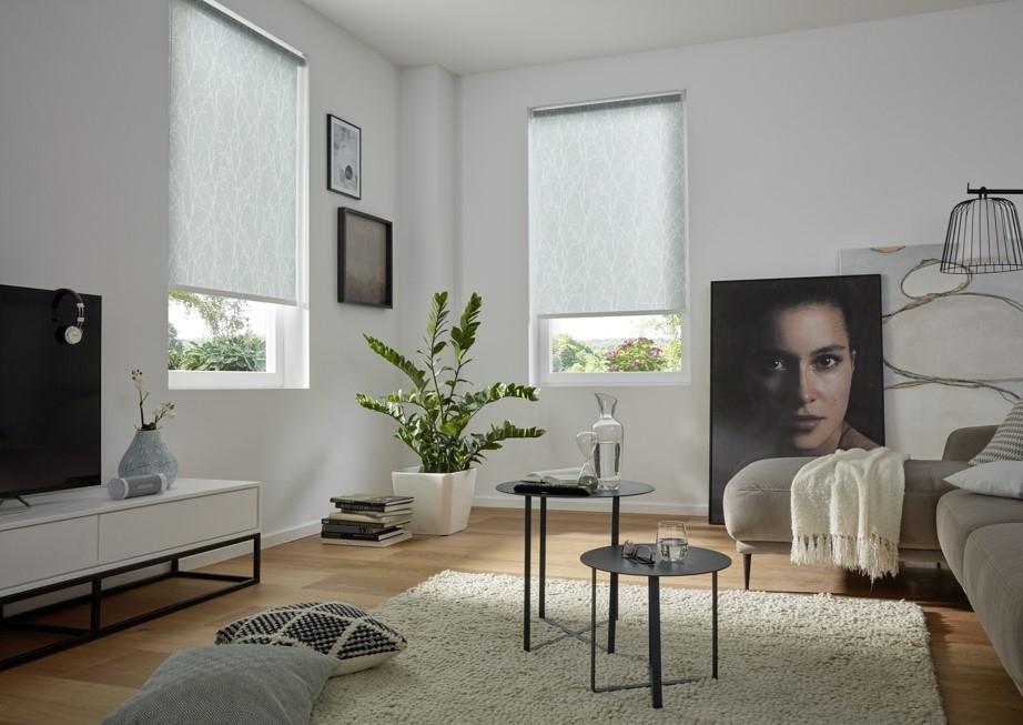 Rollo nach Maß grün - Wohnzimmer