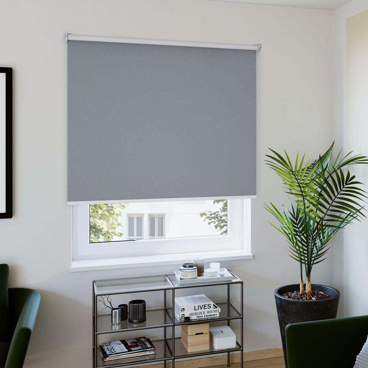 Rollo nach Maß grau Wohnzimmer